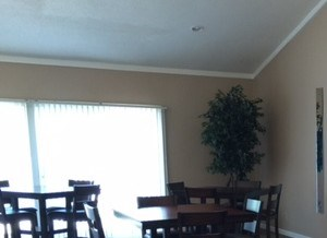 3601 Gene Field Road 1-3 Beds Apartment for Rent Photo Gallery 1