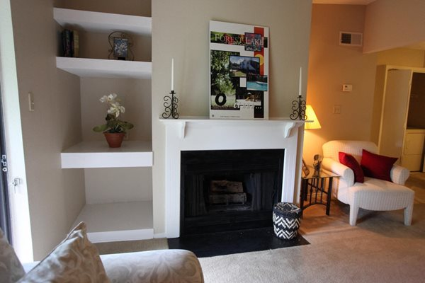 Forest Lake at Oyster Point Apartments Fireplace