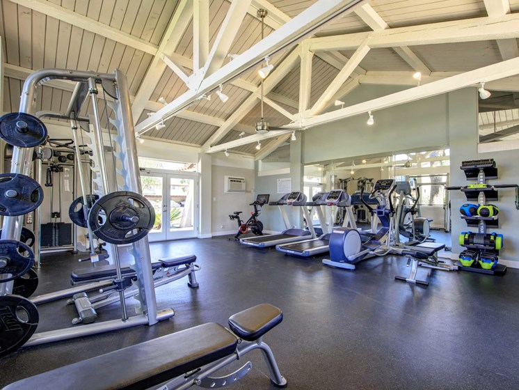 Free weights in fitness center, cardio machines, weighted machines