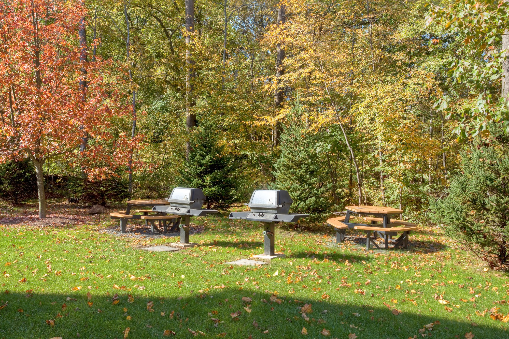 Picnic Area at Huntington Townhomes in Shelton, CT