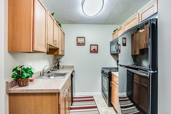 3050 Maple Grove Studio-2 Beds Apartment for Rent Photo Gallery 1