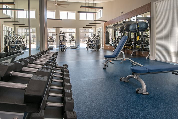 Fitness Center with Cardio Equipment at Windsor Republic Place, Austin