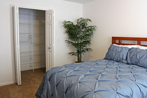 Walk-in Closets with Wardrobe Organizers at Lynbrook Apartment Homes and Townhomes, Elkhorn