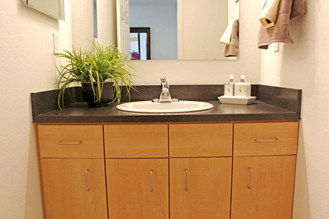 Vanity Storage And Mirror at Lynbrook Apartment Homes and Townhomes, Elkhorn, NE, 68022