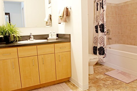 Spa Inspired Bathroom at Lynbrook Apartment Homes and Townhomes, Elkhorn, NE