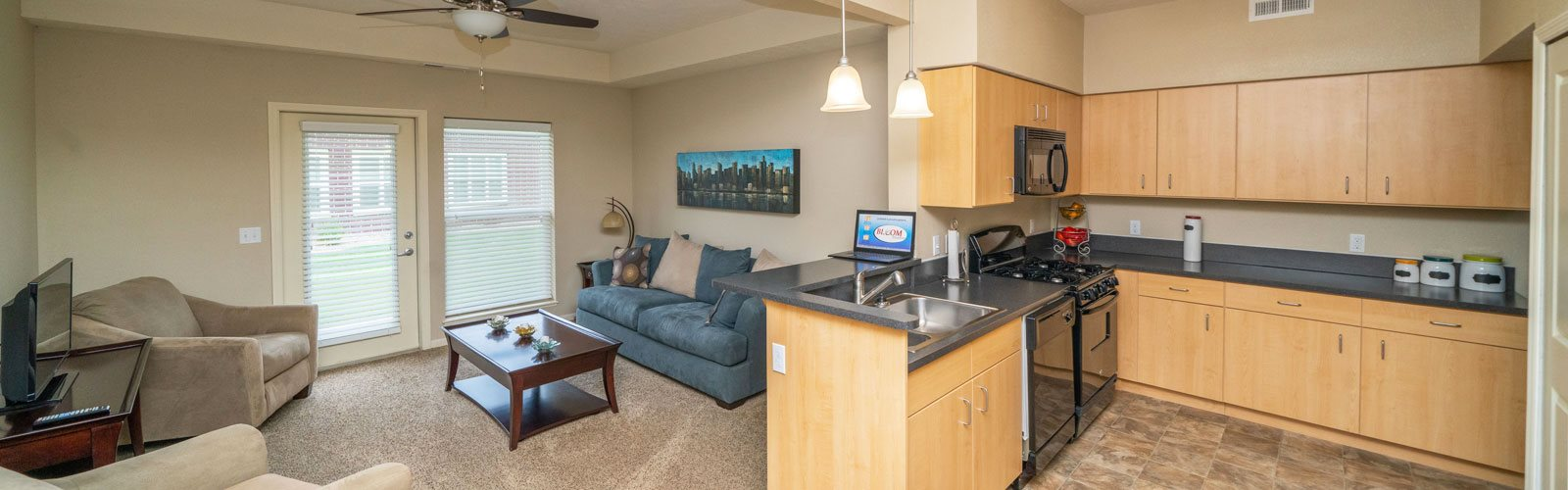 Kitchen And Living View at Lynbrook Apartment Homes and Townhomes, Elkhorn, NE
