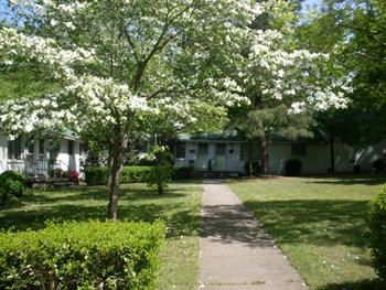 2327 1/2 Grant Avenue 1-2 Beds Apartment for Rent Photo Gallery 1