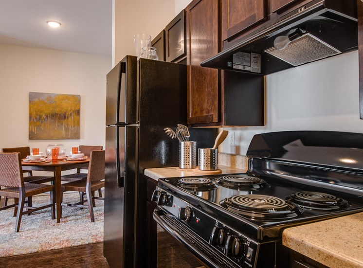 Over-the-Range Microwaves at La Contessa Luxury Apartments, Texas, 78045