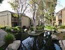 LAKE DIANNE Community Thumbnail 1