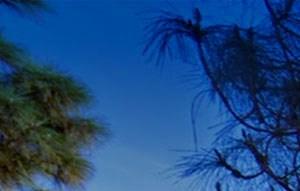 Anaheim background 1