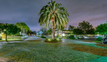 8250 Vineyard Avenue 2-3 Beds Apartment for Rent Photo Gallery 1