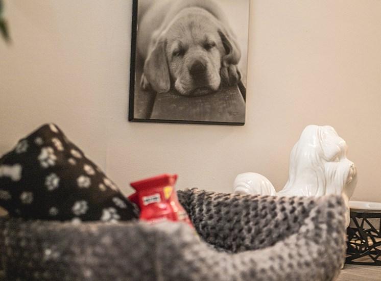 pet bed at Remington Place Apartments