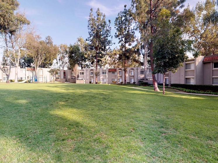 Mountain View Apartments Outdoor Green Field