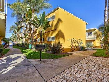 2501 Pico Blvd 1 Bed Apartment for Rent Photo Gallery 1