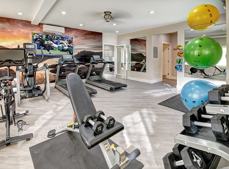 Monterra Luxury Mill Creek Apartments- Fitness Center