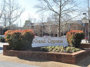 1200 Grand Cypress Square 2 Beds Apartment for Rent Photo Gallery 1