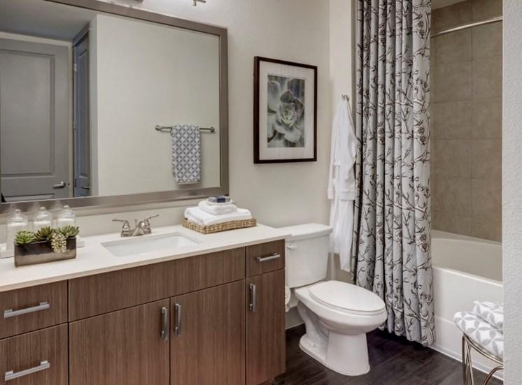 bathroom apartments in katy