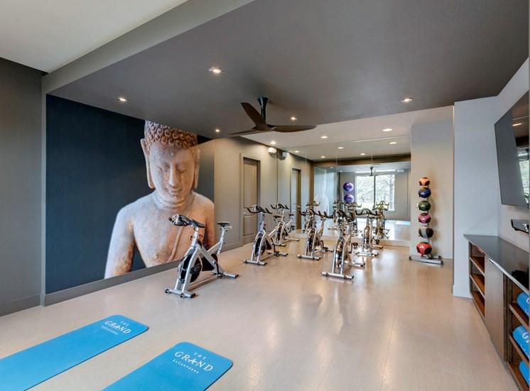 yoga and biking room apartments in katy