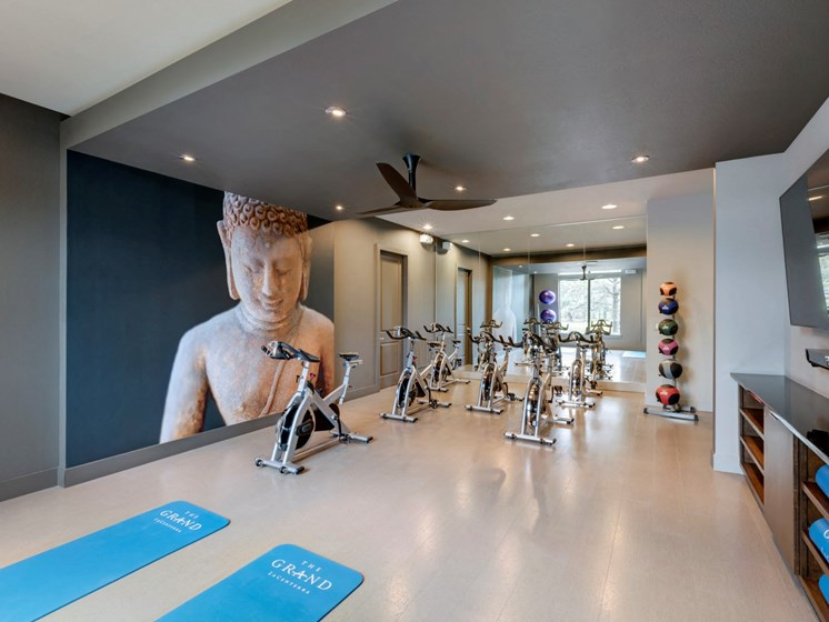 apartments in katy with yoga room