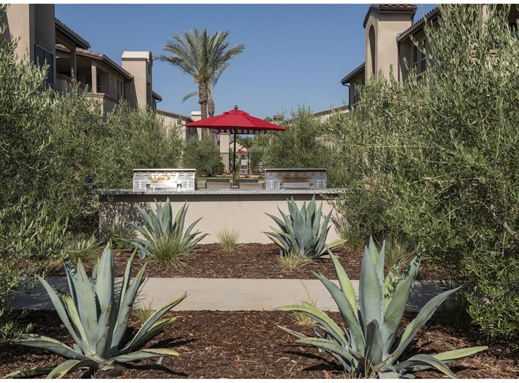 Common Courtyard area at Tempranillo Apartment Homes