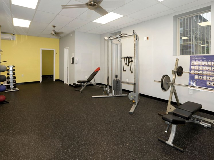 weights and lifting section at gym