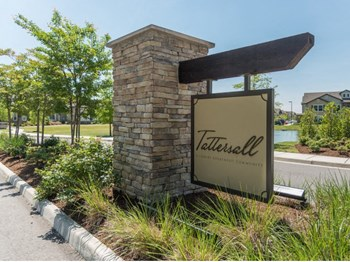 504 Cap Stone Arch 1-3 Beds Apartment for Rent Photo Gallery 1