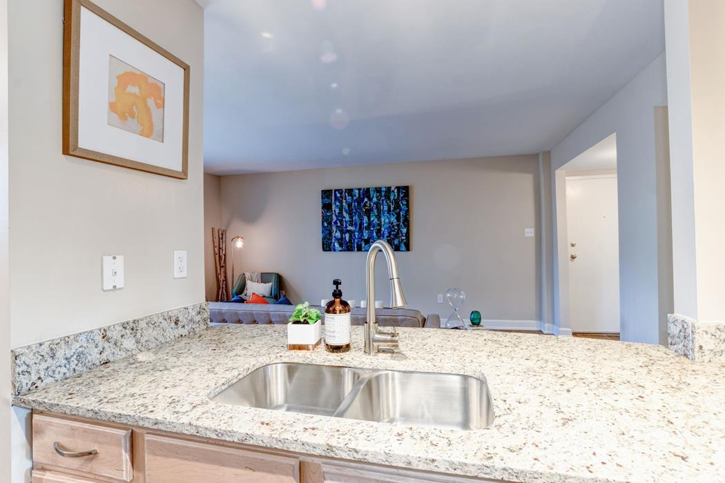 Sink with Integrated Sprayer at Ellicott Grove, Maryland