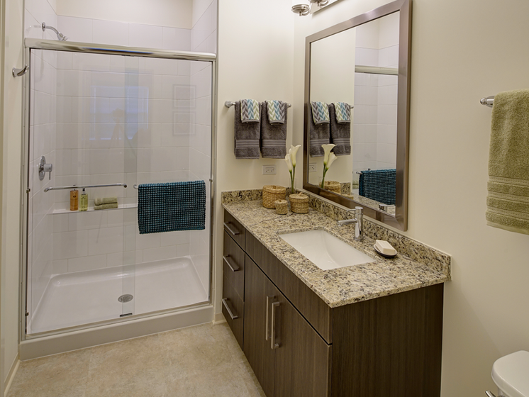 Upgraded Bathroom Fixtures at Courthouse Square Apartments, Illinois, 60187