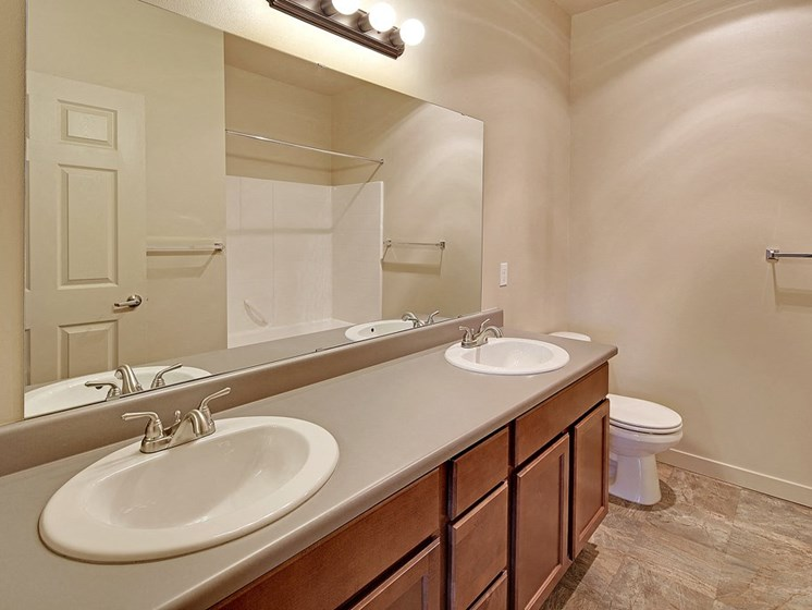 Luxury Apartment Bathroom Dual Two Sinks Double Vanity His and Hers Shower Bathtub