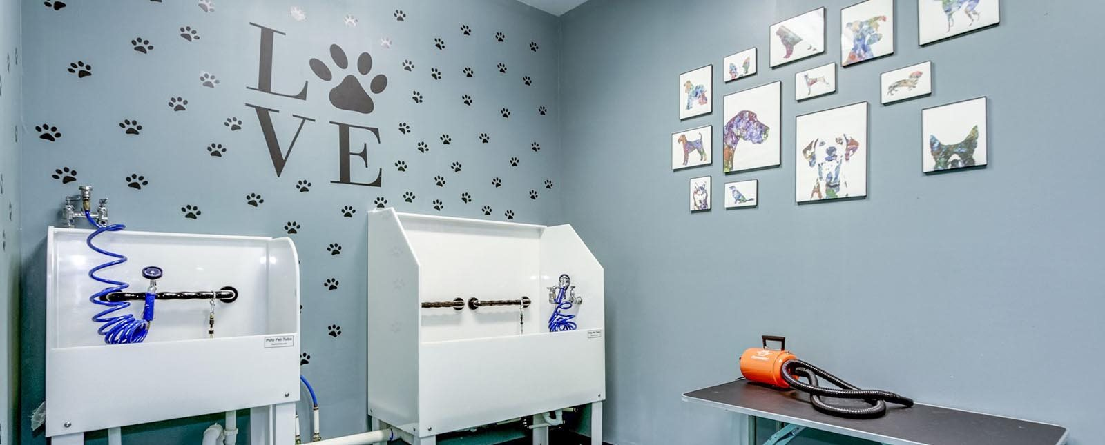Pet Spa at The Haven luxury apartments in Malvern, PA