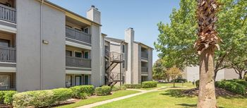 6600 Ed Bluestein 1-2 Beds Apartment for Rent Photo Gallery 1