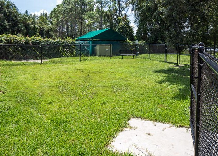 The Vinings at Hunters Green Apartments Tampa Dog Park