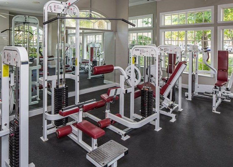 The Vinings at Hunters Green Apartments Tampa Fitness Center