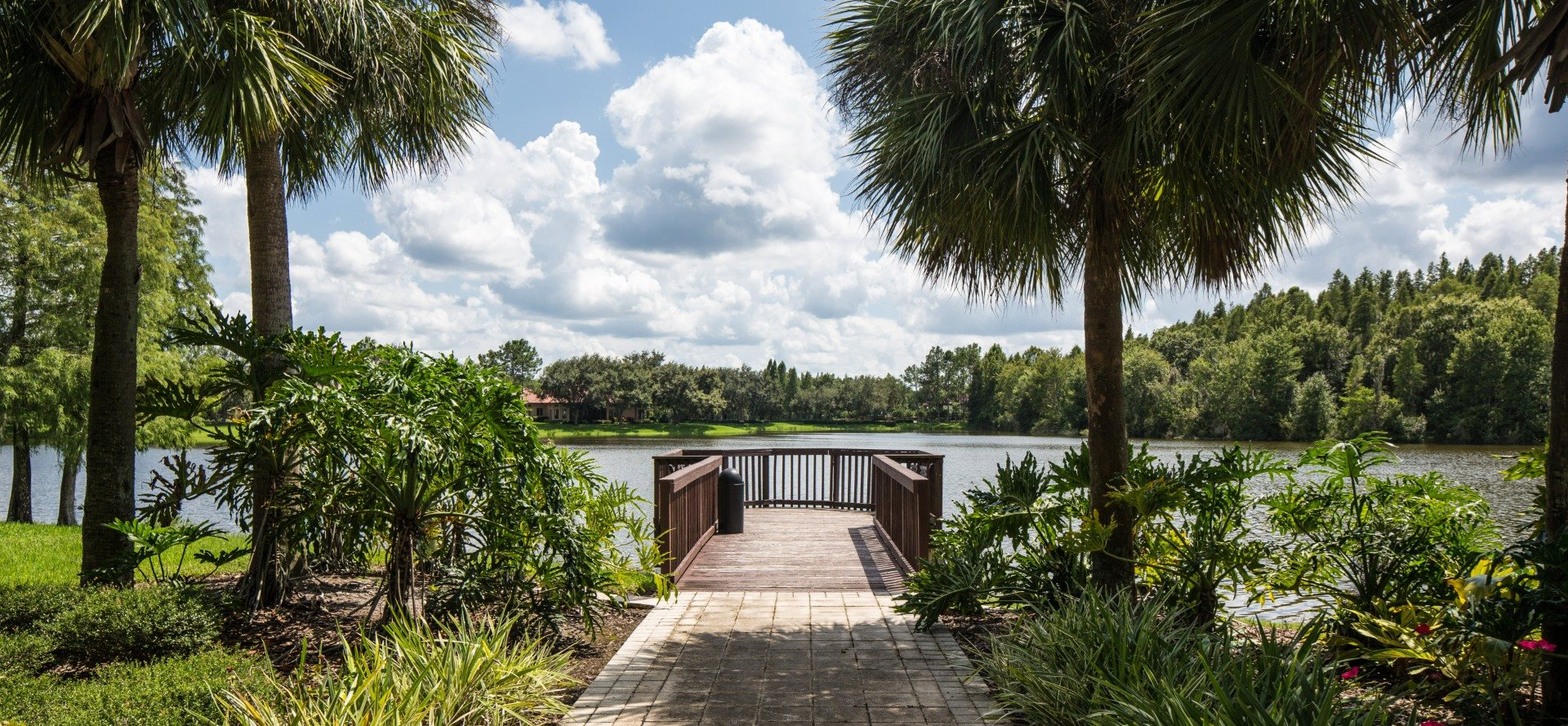 Walkway to dock overlooking water surrounded by palm trees