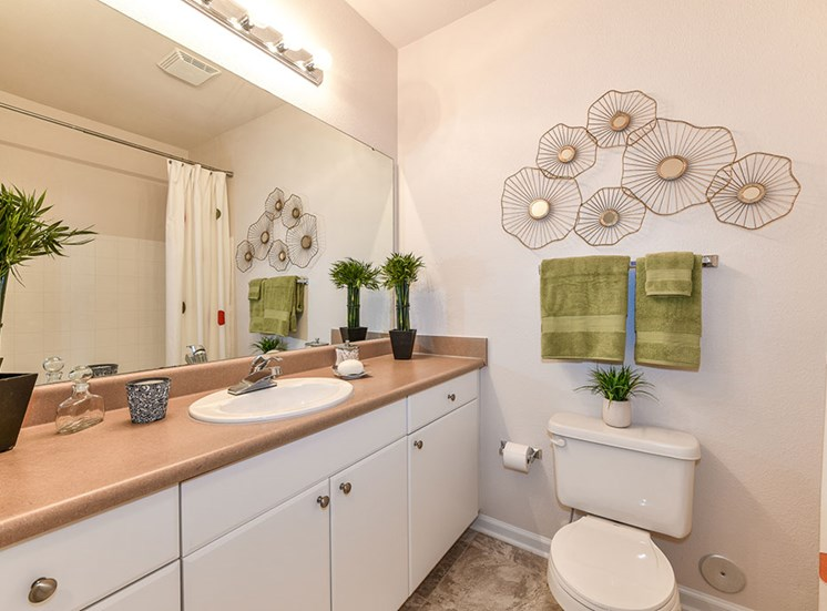 Spacious Bathroom with Relaxing Garden Tub at Alden Place at South Square Apartments, Durham, NC 27707