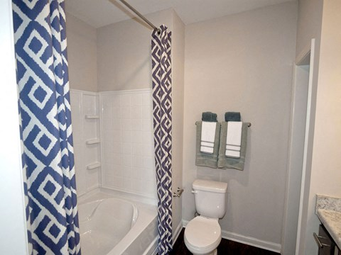 Bathrooms include Garden Soaking Tubs and Dual Vanity Sinks at Ansley at Roberts Lake Apartment Homes, Arden, NC, 28704