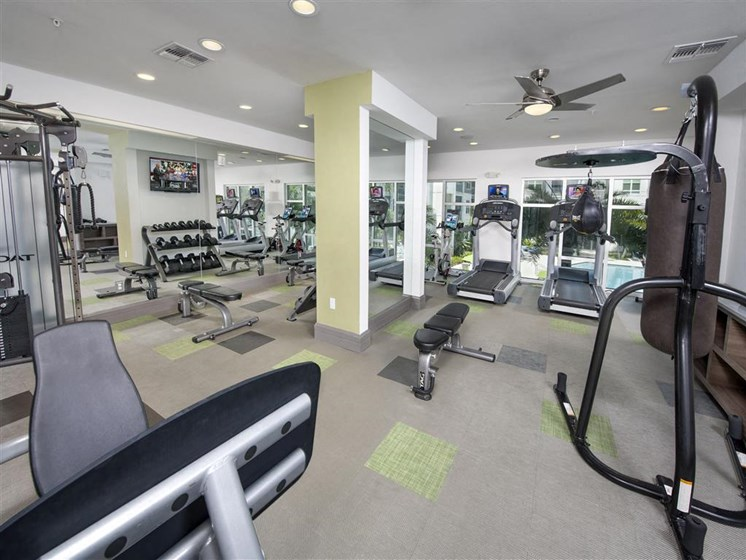 Health and Fitness Club including TVs, Boxing Studio, and Cardio and Weight Training at Bleecker Hyde Park, Tampa, FL, 33606
