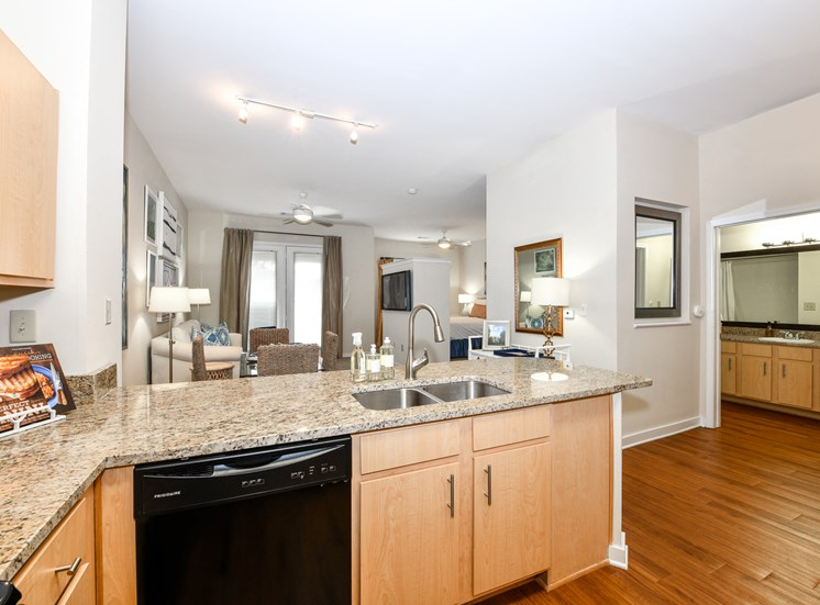 Newly Renovated Gourmet Kitchens with Granite Countertops, Stainless Steel Appliances and Pantry at The Bristol on Union Apartment Homes, Memphis, TN 38104