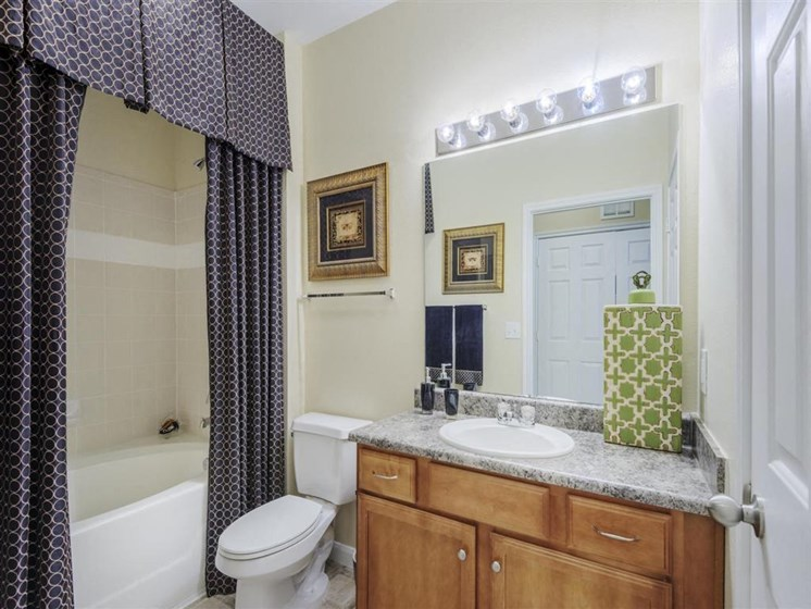 Spacious Bathroom with Relaxing Garden Tub at Carrington Park At Gulf Pointe, Houston, TX 77089