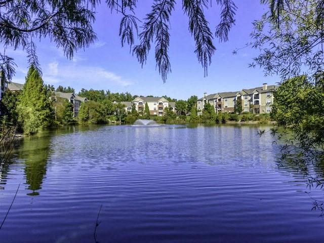 Lake With Lush Natural Surrounding at Columns at Wakefield, Raleigh, North Carolina