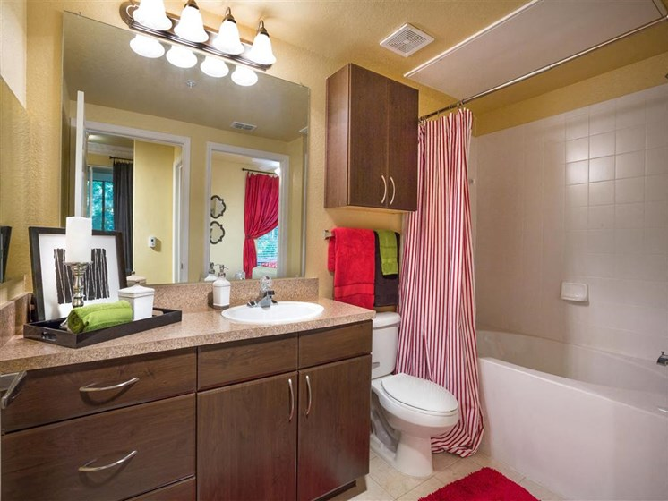 Bathrooms include Garden Soaking Tubs and Custom Upgraded Cabinetry at Courtney Bend Apartment Homes, Hardeeville, SC 29927