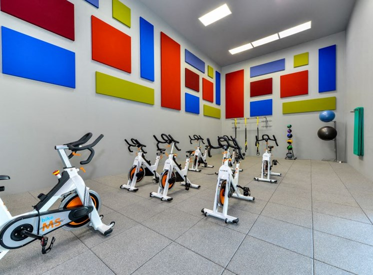 Indoor Spin Room with 7 Bikes, Kettle Bells, Exercise Balls, Yoga Mats and View of the Indoor Pool at Hampton Woods Apartments, Shawnee, KS 66217