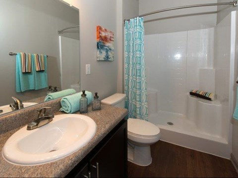 Spacious Bathroom with Relaxing Garden Tub or Stand Up Showers and Double Vanity Sinks at Moretti at Vulcan Park Apartment Homes, Homewood, AL 35209