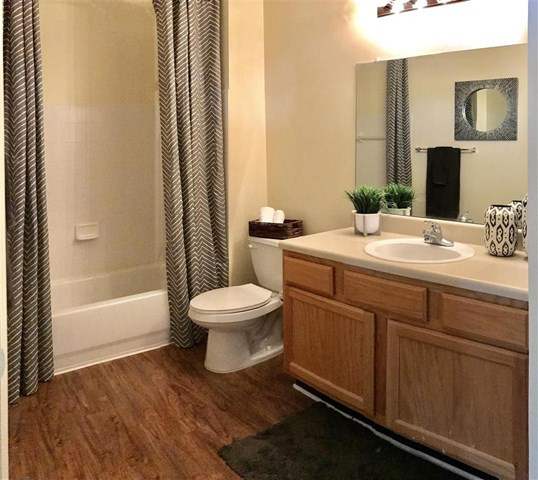 Spacious Bathroom with Relaxing Garden Tub at Parc 1346 Apartments, Chattanooga, TN 37421