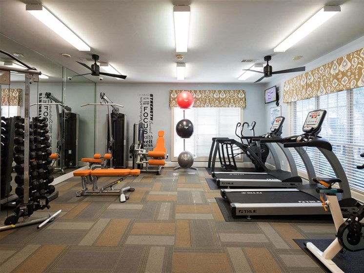 Fully Equipped Athletic Club with Weight Training, Cardio Equipment and Yoga Balls at Park Summit Apartments, Decatur, GA 30033