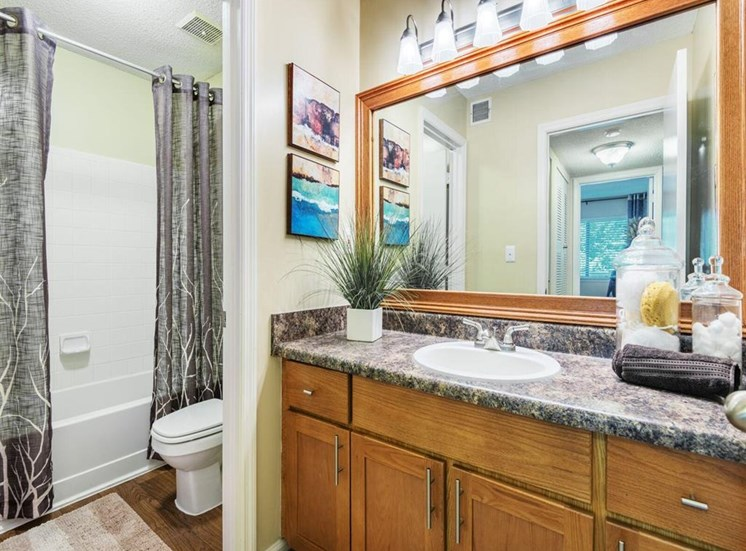 Spacious Bathroom with Relaxing Tub at Rosemont Apartments, Roswell, GA 30076