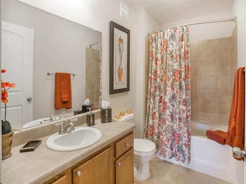 Spacious Bathroom with Relaxing Garden Tub at The Arlington at Eastern Shore Apartments, Spanish Fort, AL 36527