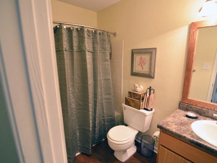 Spacious Bathroom with Relaxing Garden Tub at The Summit Apartments, Memphis, TN 38128