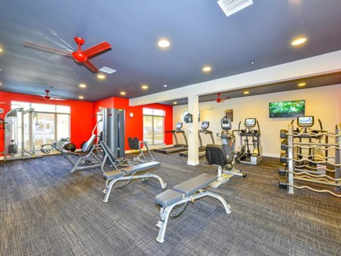 Health and Fitness Center including TVs, with Cardio and Weight Training Equipment  at Vanguard Crossing Apartments, University City, MO 63124