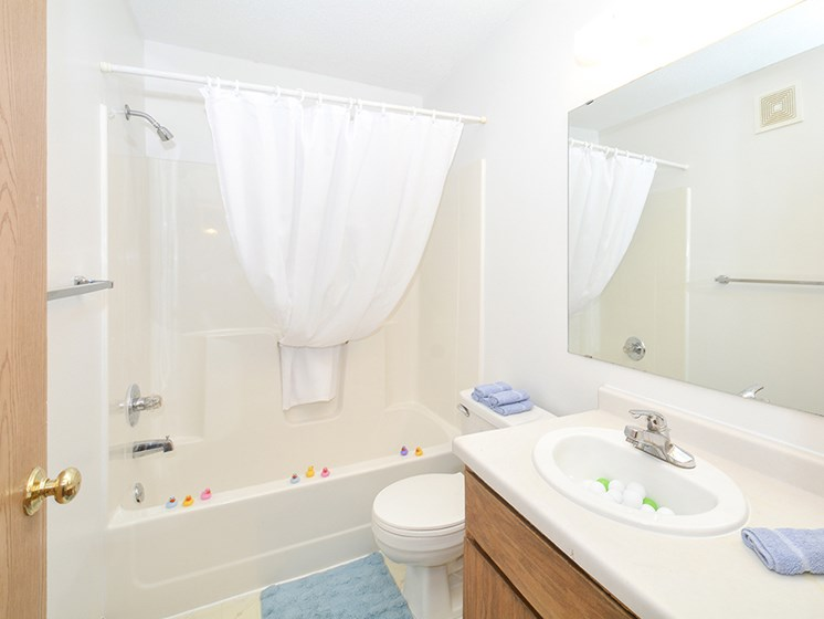 Full-Size Bathrooms with Vanity